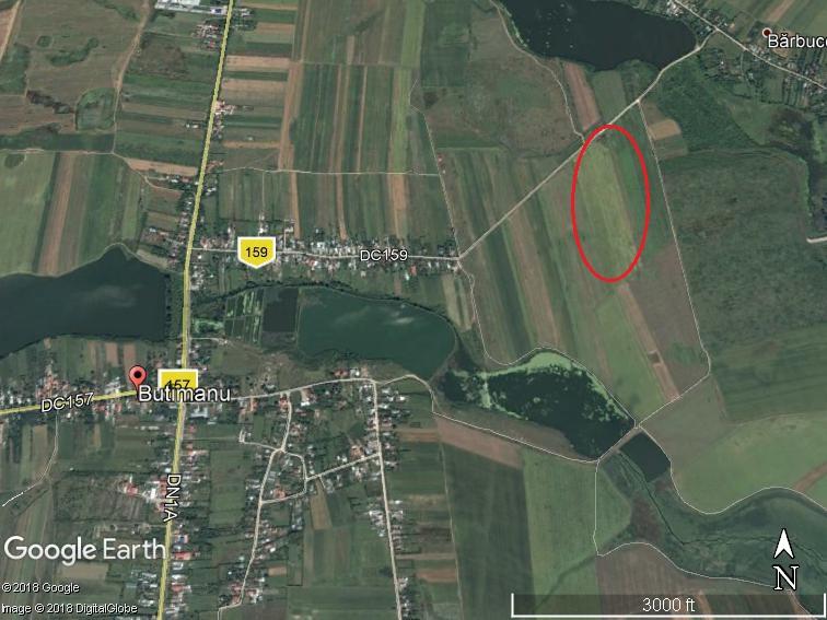 Land for sale: 41.005 sqm – Butimanu, Dambovita